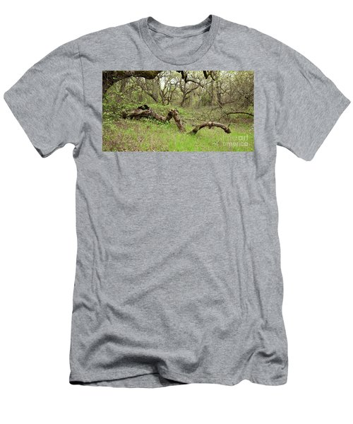 Park Serpent Men's T-Shirt (Athletic Fit)