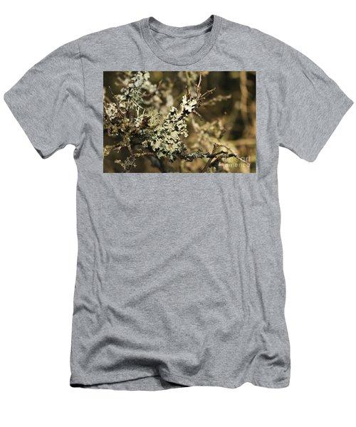 Parmotrema Perlatum Lichen Men's T-Shirt (Athletic Fit)