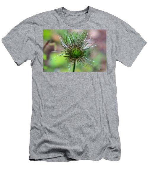 Pasque Fluff Men's T-Shirt (Athletic Fit)