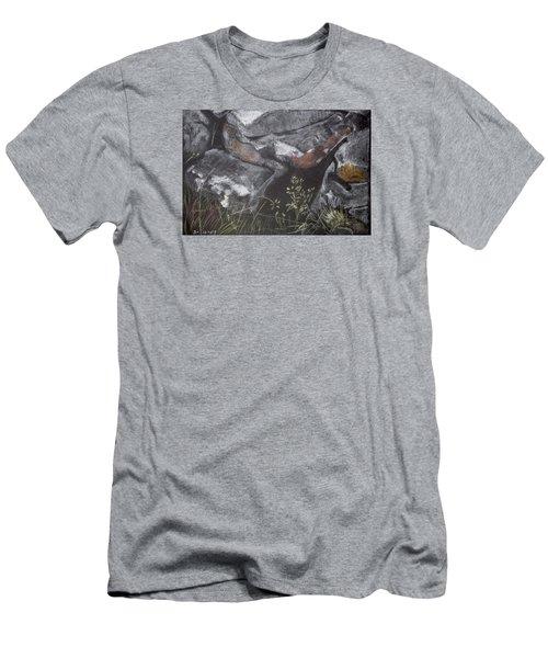 Pastel Stones And Plants On Black Men's T-Shirt (Athletic Fit)