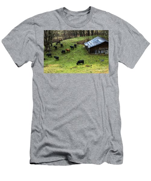 Pasture Field And Cattle Men's T-Shirt (Slim Fit) by Thomas R Fletcher