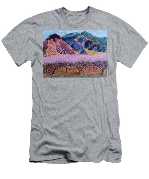 Peach Orchard Canigou Men's T-Shirt (Athletic Fit)