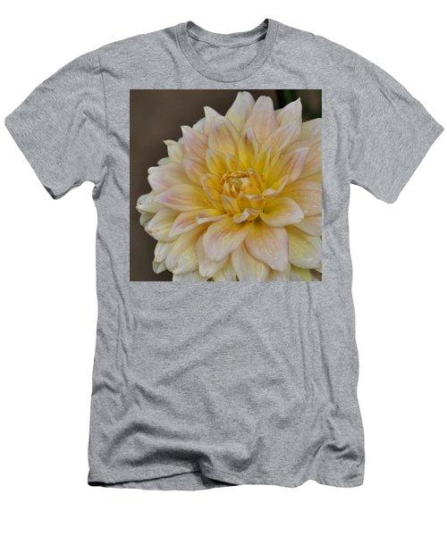 Peaches And Cream Dahlia Men's T-Shirt (Athletic Fit)