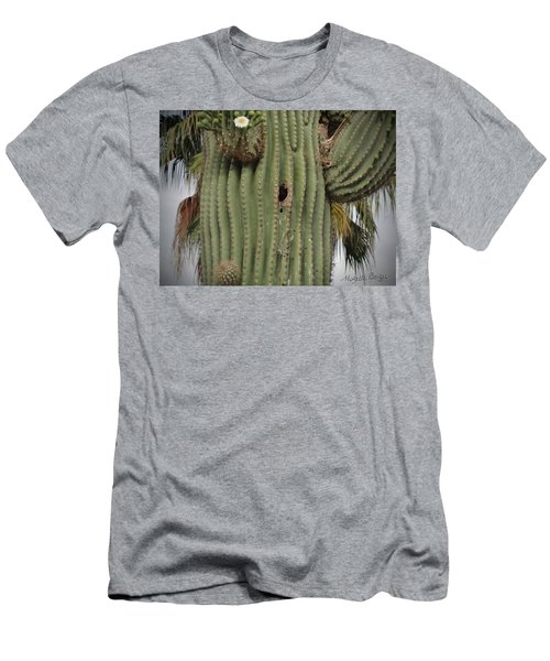 Peek-a-boo Cactus Wren Men's T-Shirt (Athletic Fit)