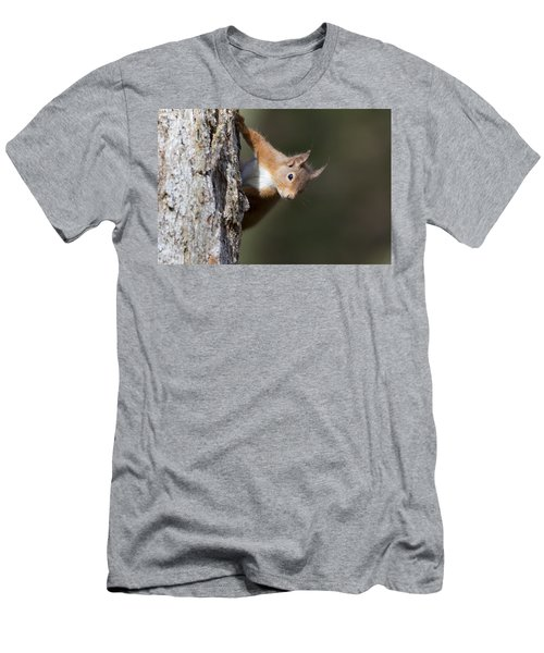Peekaboo - Red Squirrel #29 Men's T-Shirt (Athletic Fit)