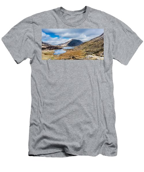 Pen Yr Ole Wen Men's T-Shirt (Athletic Fit)