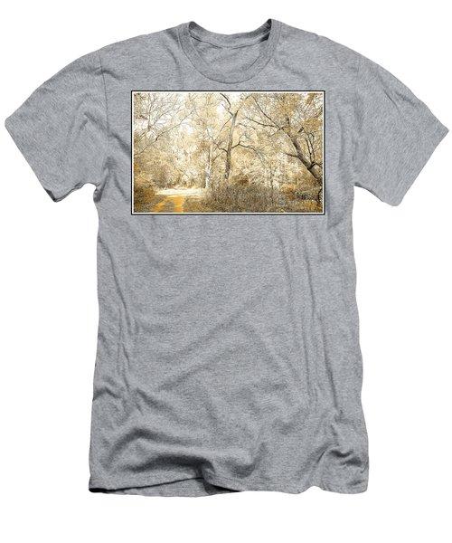Pennsylvania Autumn Woods Men's T-Shirt (Athletic Fit)