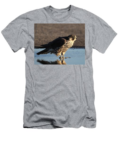 Peregrine Falcon Shirley New York Men's T-Shirt (Slim Fit) by Bob Savage