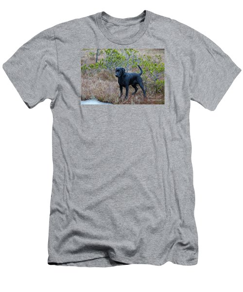 Pet Portrait - Radar Men's T-Shirt (Athletic Fit)