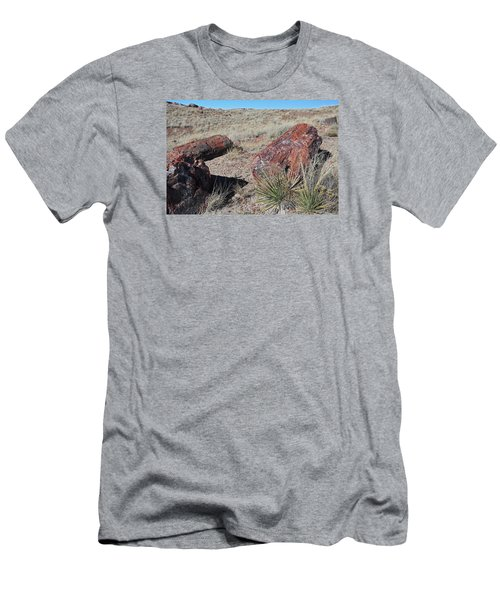 Petrified Afternoon Men's T-Shirt (Slim Fit) by Gary Kaylor