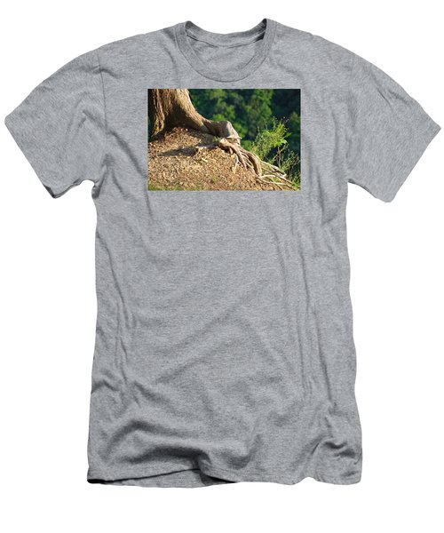 Picture Of A Tree On A Ledge Men's T-Shirt (Athletic Fit)