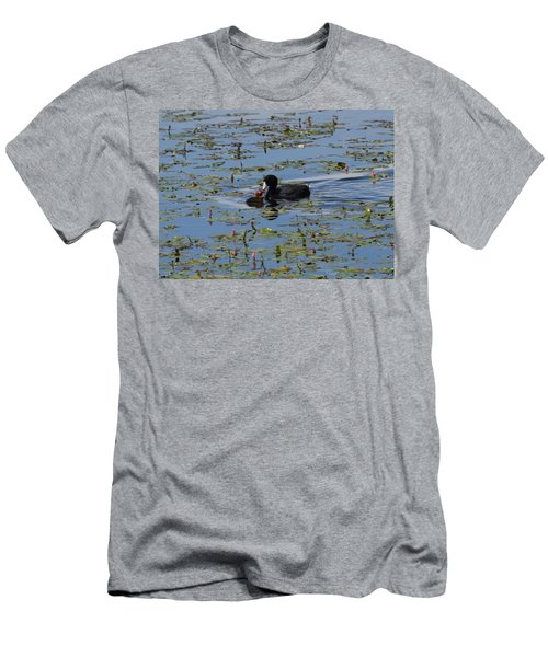 Pied Billed Grebe Lake John Swa Co Men's T-Shirt (Athletic Fit)