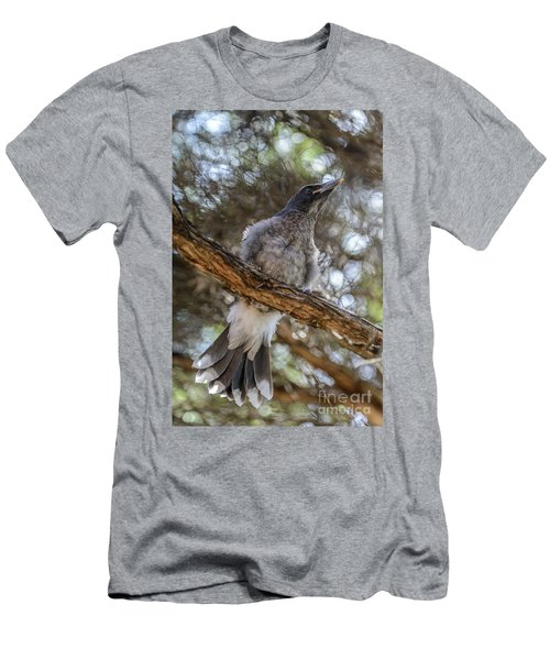 Pied Currawong Chick 1 Men's T-Shirt (Athletic Fit)