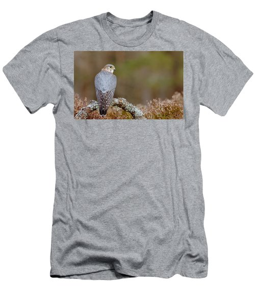 Pigeon Hawk Men's T-Shirt (Athletic Fit)