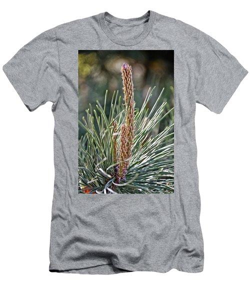 Pine Shoots Men's T-Shirt (Athletic Fit)