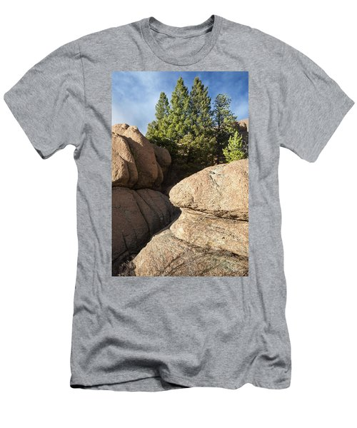 Pines In Granite Men's T-Shirt (Athletic Fit)