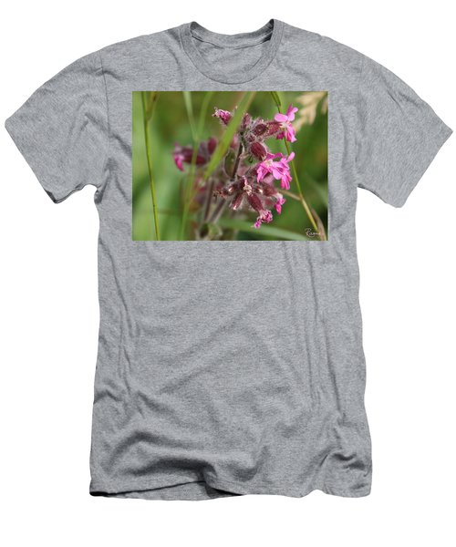 Pink Campion In August Men's T-Shirt (Athletic Fit)