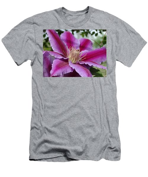 Pink Clematis Vine Men's T-Shirt (Slim Fit) by Rebecca Overton