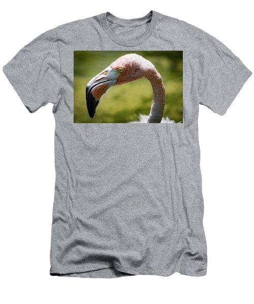 Pink Flamingo Men's T-Shirt (Athletic Fit)