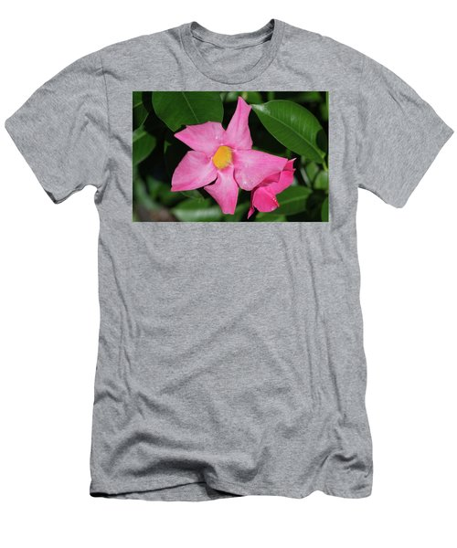 Pink Mandevilla Men's T-Shirt (Athletic Fit)