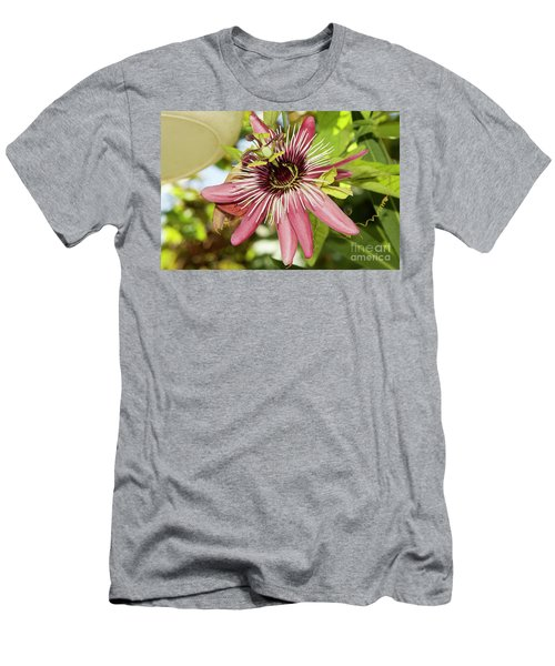 Pink Passiflora Men's T-Shirt (Athletic Fit)