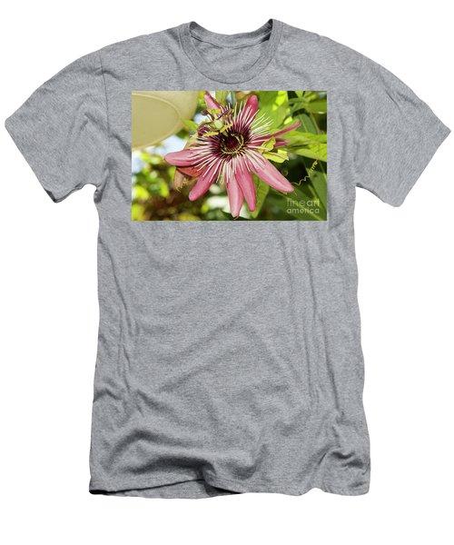 Pink Passiflora Men's T-Shirt (Athletic Fit)