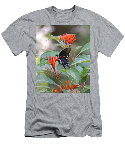 Pipevine Swallowtail Butterfly On Firebush Men's T-Shirt (Athletic Fit)