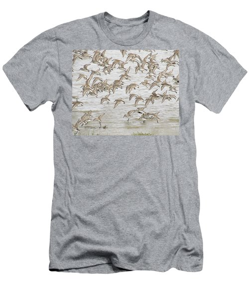 Piping In Spring Men's T-Shirt (Slim Fit) by I'ina Van Lawick