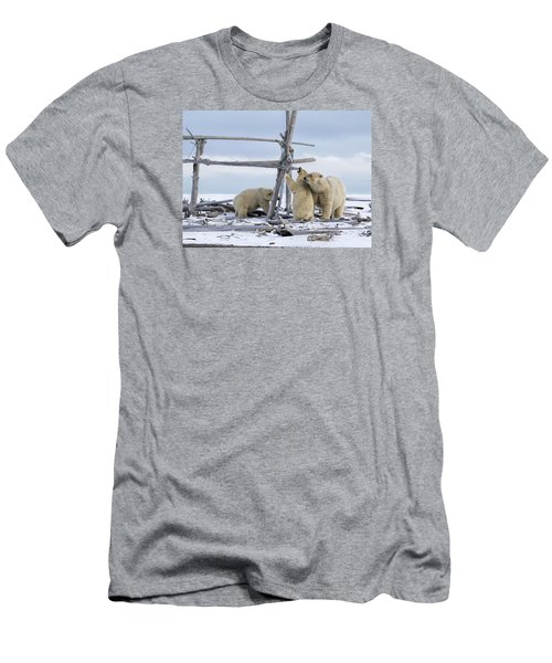 Playtime In The Arctic Men's T-Shirt (Athletic Fit)