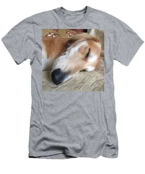 Please Be Quiet. Saluki Men's T-Shirt (Athletic Fit)