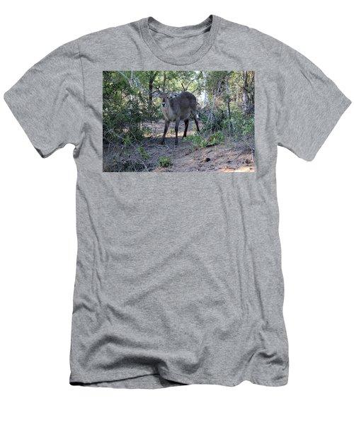 Please Don't Hurt Me Men's T-Shirt (Athletic Fit)