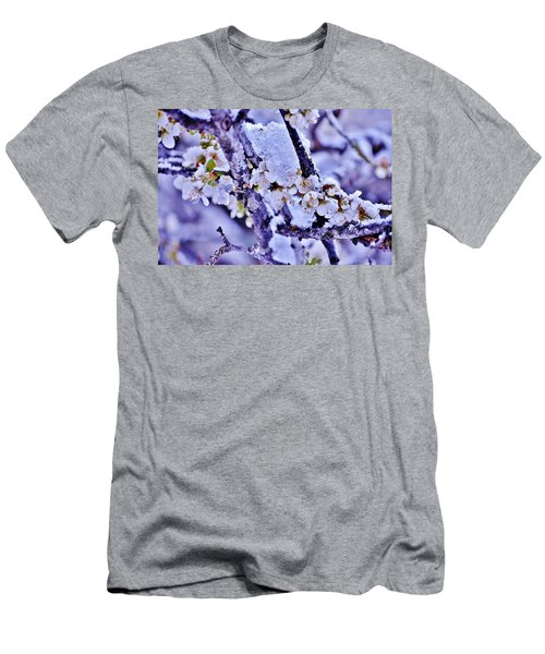 Plum Blossoms In Snow Men's T-Shirt (Athletic Fit)