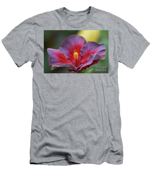 Plum Wonderful Men's T-Shirt (Athletic Fit)