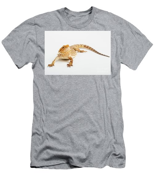 Pogona Isolated Men's T-Shirt (Athletic Fit)