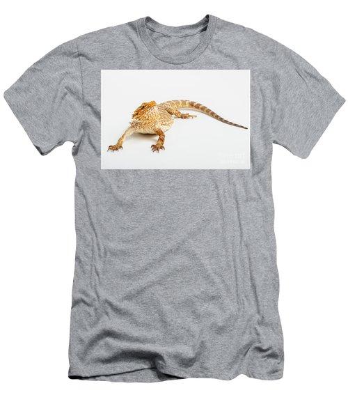Pogona Isolated Men's T-Shirt (Athletic Fit)