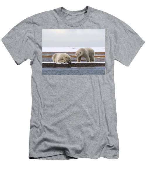 Polar Bear Zzzzzzz's Men's T-Shirt (Athletic Fit)