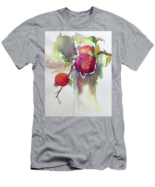 Pomegranates Men's T-Shirt (Athletic Fit)