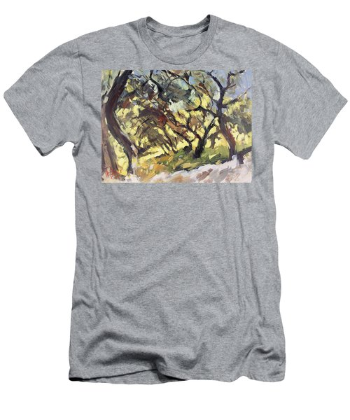 Popping Sunlight Through The Olive Grove Men's T-Shirt (Athletic Fit)