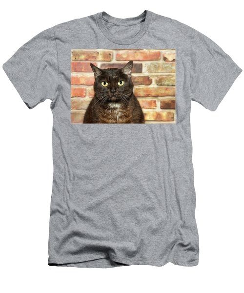 Portrait Of A Bengal Kitty Men's T-Shirt (Athletic Fit)