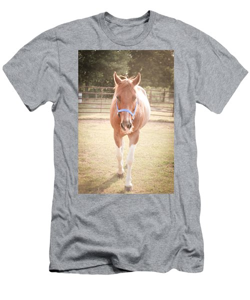Portrait Of A Light Brown Horse In A Pasture Men's T-Shirt (Athletic Fit)