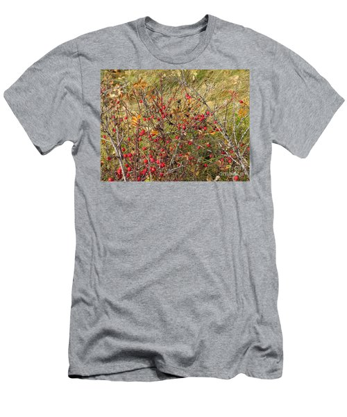 Prairie Rosehips Men's T-Shirt (Athletic Fit)