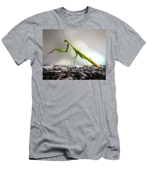 Men's T-Shirt (Athletic Fit) featuring the photograph Praying Mantis  by Bob Orsillo