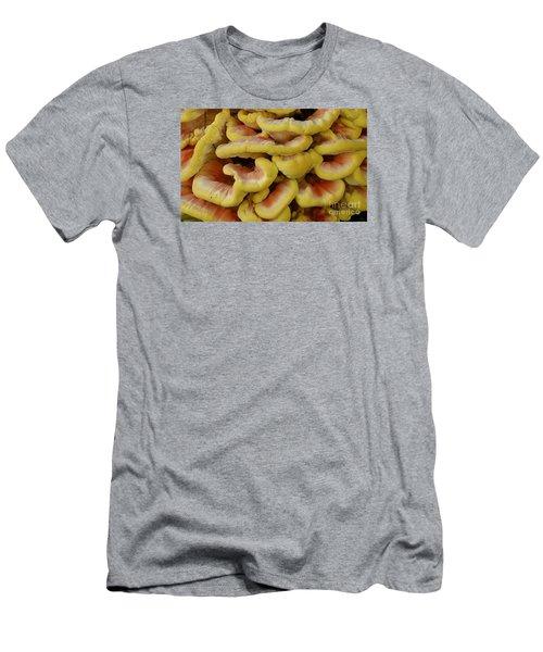 Pretty Chicken Men's T-Shirt (Slim Fit) by Randy Bodkins
