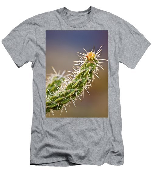 Prickly Branch Men's T-Shirt (Athletic Fit)