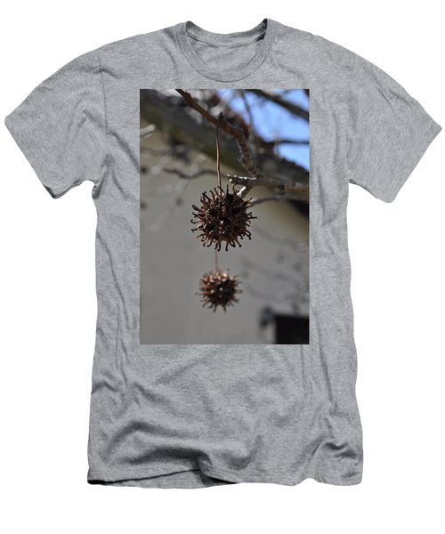 Prickly Liquidamber Pod Men's T-Shirt (Athletic Fit)