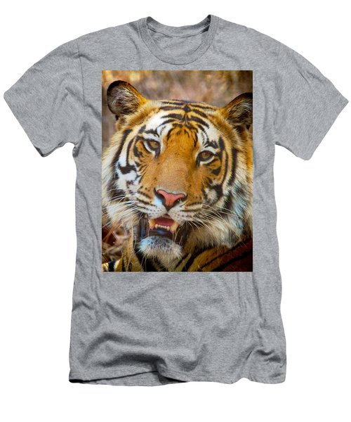 Prime Tiger Men's T-Shirt (Athletic Fit)