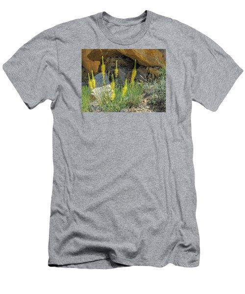 Prince's Plume Men's T-Shirt (Athletic Fit)
