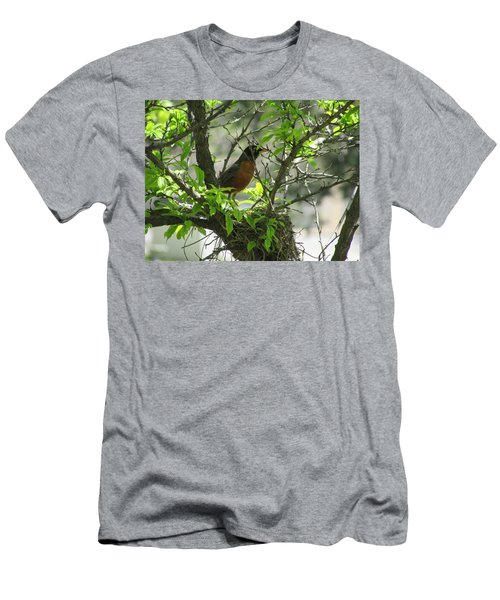 Protecting The Nest Men's T-Shirt (Athletic Fit)