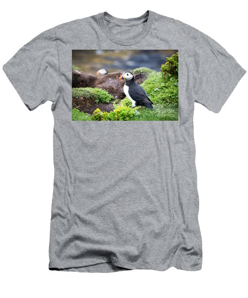 Puffin  Men's T-Shirt (Slim Fit)