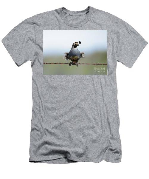 Punk Quail Men's T-Shirt (Athletic Fit)